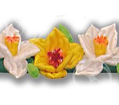 Пневмогирлянда 'Нарцисс'